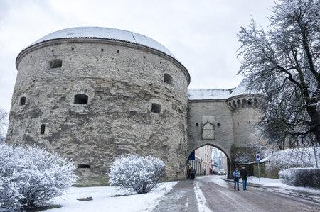 tallin: TALLINN, ESTONIA - FEBRUARY 23, 2016: Fat Margarets Tower in Old Town of Tallinn, Estonia. Old Town is listed in the UNESCO World Heritage List Editorial