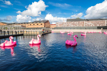SAINT- PETERSBURG, RUSSIA - AUGUST 13, 2018: Rubber pink flamingos at the pond of New Holland island in the historical center of Saint-Petersburg, Russia 新闻类图片