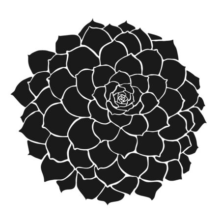 Flower as customizeable vector data in black and white Çizim