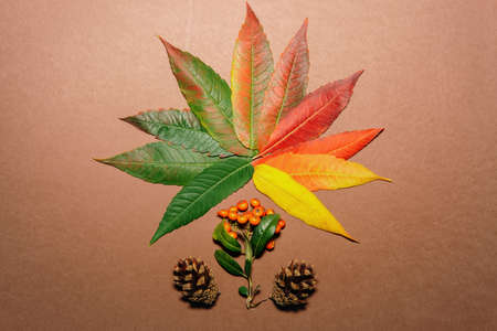 Autumn leaves in every color of autumn