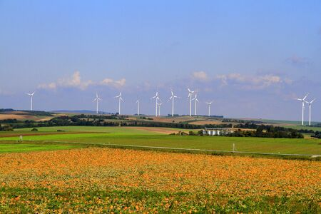 Pumpkin field and wind chargers