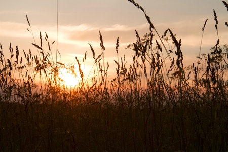 midsummer: Magic of midsummer night in Latvia - sunset in nature