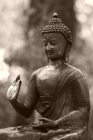Buddha metal statue in a forest