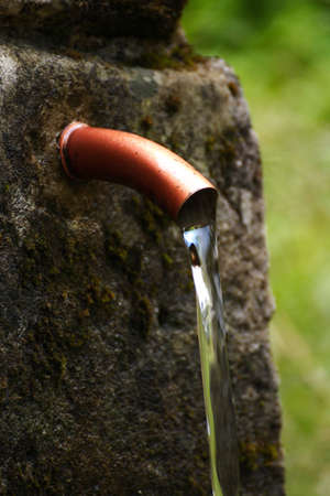 wellspring in forest if you are thirsty Stock Photo