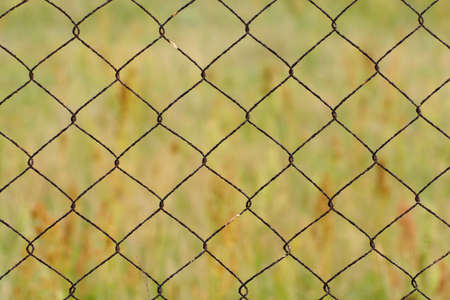 Fence in front of the garden Stock Photo - 16991963