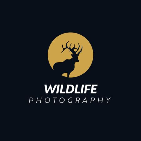 Deer Logo Design Inspiration, Vector illustration