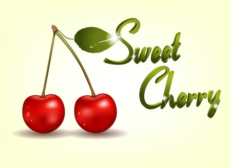 Beautiful cherry illustration with green leaf and water drops. Vector
