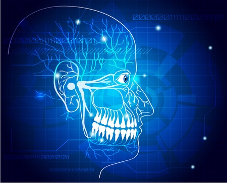 hygienist: Abstract medical background, human head, teeth, and nerves.