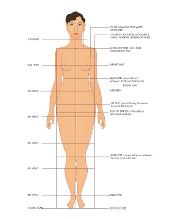 breast implant: Sewing measurements. Shoulder line, breast line, waist line, etc. Illustration