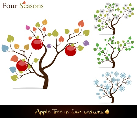 blooms: Four seasons. Colorful apple tree with delicious red apples, white flowers and snow.