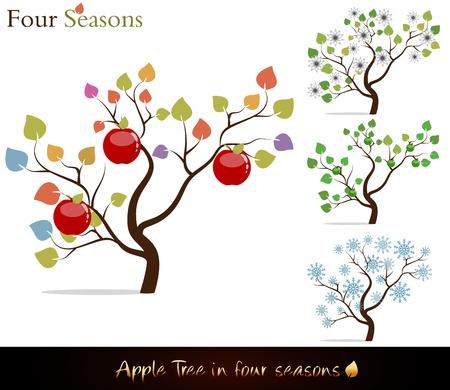 Vier seizoenen. Kleurrijke appelboom met heerlijke rode appels, witte bloemen en sneeuw. Stock Illustratie