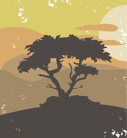 Pine tree, vintage illustration Vector