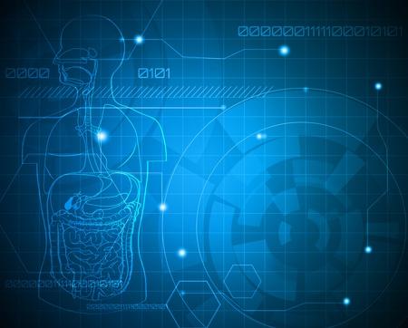 corpo umano: Sfondo medico. Digerente Abstract. Vettoriali