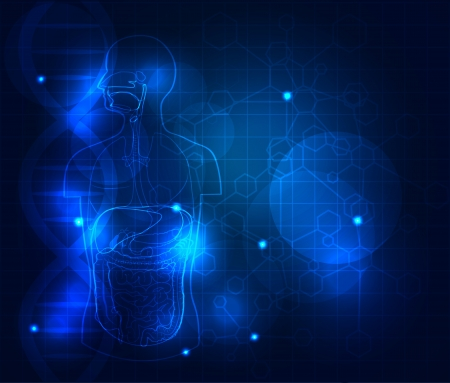 генетика: Медицинский фон. Аннотация пищеварительной системы, красивый голубой цвет.