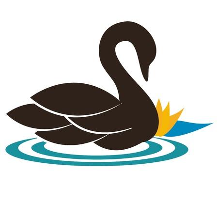cisnes: Natación hermosa ilustración cisne cerca del lirio de agua, la sensación de tranquilidad y pureza colores armónicos se puede utilizar también como símbolo de la empresa o en el icono Vectores