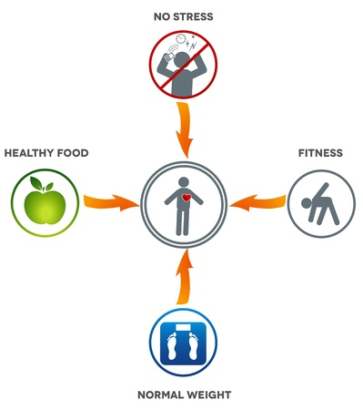 modern lifestyle: Healthy lifestyle  Healthy food, fitness, normal weight and no stress leads to healthy heart and life   Illustration