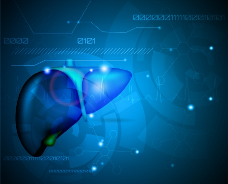 endocrine: Liver  Illustration of human internal organ- liver  Abstract medical wallpaper  Beautiful deep blue color and light shades