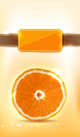Fresh orange  Bright and sparkling design  Add Your text  Vector