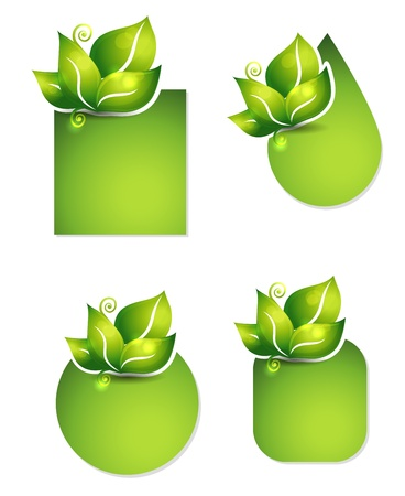 holistic: Fresh leafs templates. Various shapes. Isolated on a white background.