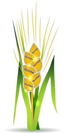 gluten: Wheat illustration with gluten marks on each grain