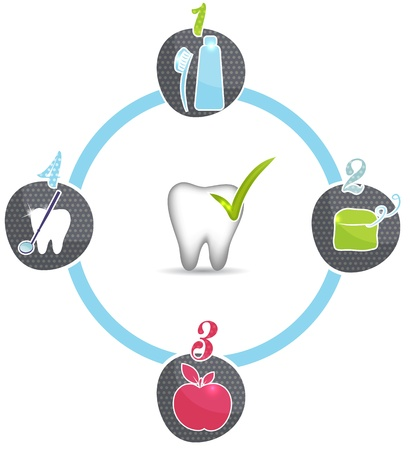 Healthy teeth tips, symbols  Brush daily, floss daily, eat healthy food, regular dental visits Vector