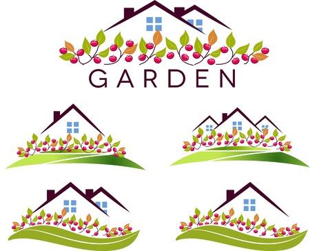 lawn: Fruit tuin en huis Prachtige tuin, appelbomen en gazon geïsoleerd op een witte achtergrond Stock Illustratie