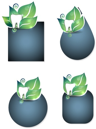 Dental brochure design  Healthy teeth and leafs layouts, natural teeth care concept   Vector