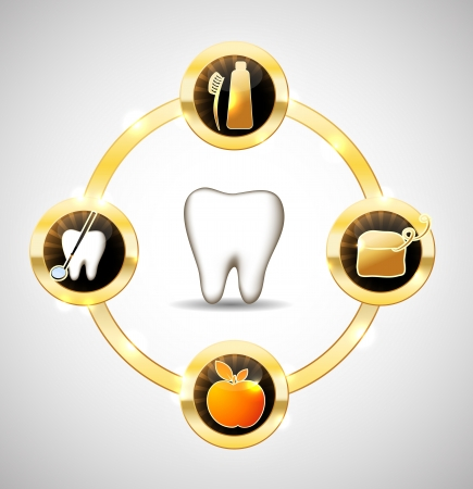 Healthy tooth illustration. Healthy teeth care advices. Brushing, flossing, healthy food and dental visits. Luxury dental care Vector