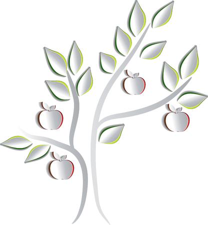 apple tree: Apple tree   Illustration