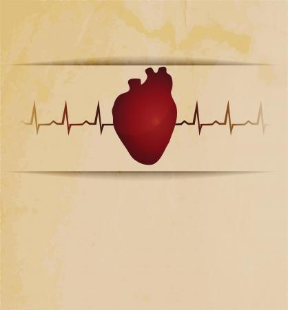 ser humano: Silueta del coraz�n humano y electrocardiograma atr�s. Dise�o hermoso de la vendimia.
