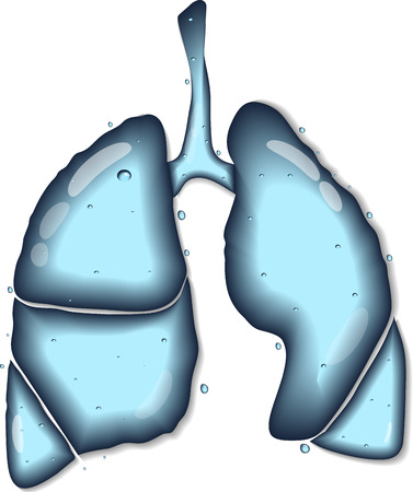 surgery concept: Lungs. Abstract human anatomy of lungs. Lungs as clear water concept.