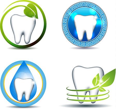 sorridente: Símbolos dentes saudáveis, vários projetos. Dente com folhas e queda. Natureza envolvidos na saúde humana. Os projetos bonitos e brilhantes. Isolado em um branco.