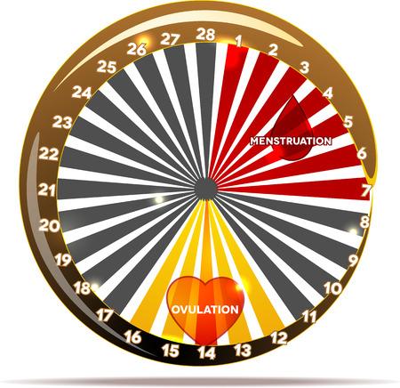 hemorragias: Gráfico del ciclo menstrual. Normalito días del ciclo menstrual. Sangrado período y la ovulación. Sangrado día-drop símbolo; ovulación corazón. Diseño creativo colorido.