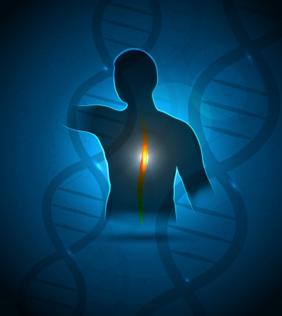 dna chain: Human back, vertebral column and DNA  health care design.
