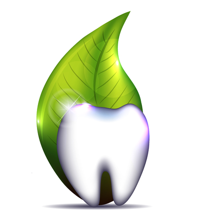 Healthy tooth with leaf. Isolated on a white background. Vector