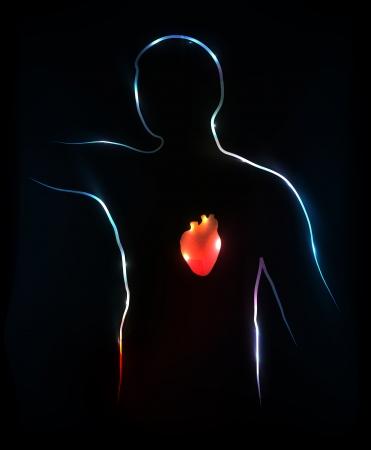 medical illustration: Heart  Abstract medical illustration, background