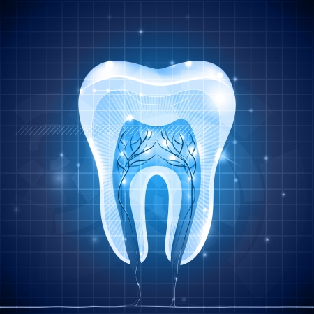 tooth pain: Healthy white tooth cross section, detailed anatomy. Abstract blue dental design. Illustration