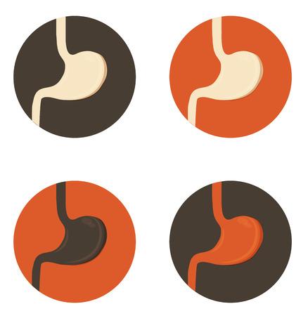 sistema digestivo: Símbolos sencillos estómago humano, ilustración médica, colores brillantes Vectores