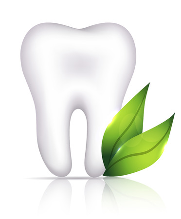 dent: Healthy white tooth and green leafs illustration. Dental health care. Illustration