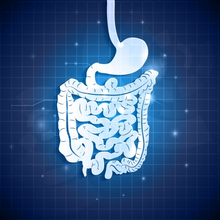 bowels: Human gastrointestinal tract and abstract blue background with light shades Illustration