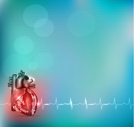 Colorful cardiology background, red heart anatomy and beautiful light blue background.