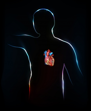 Human silhouette and heart anatomy, bright and colorful design, back background. Vector