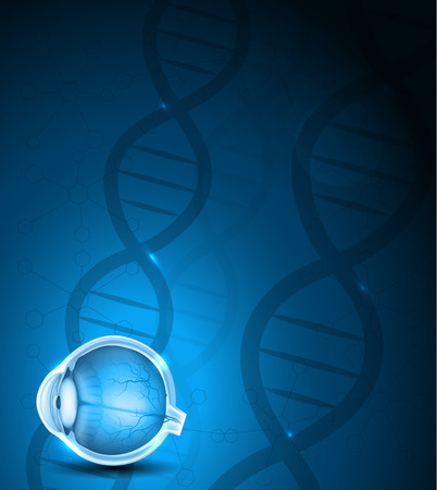 eye ball: Human eye anatomy and blue DNA background