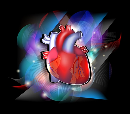 Bright cardiology poster, human heart anatomy on a vivid and colorful background  Vector