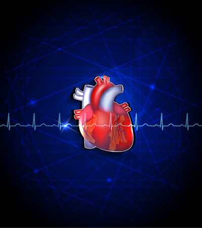 deep blue: Heart anatomy on a deep blue background Illustration