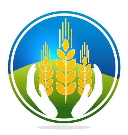 produits céréaliers: Deux mains tenant le blé, le ciel et les champs à l'arrière-plan Illustration