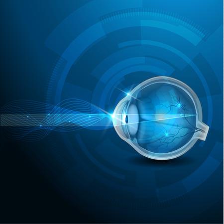 目, 断面, 正常な視力の抽象的な青い図の解剖学.