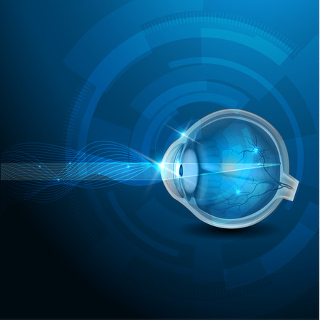 Anatomía del ojo, sección transversal, azul ilustración abstracta visión normal. Vectores