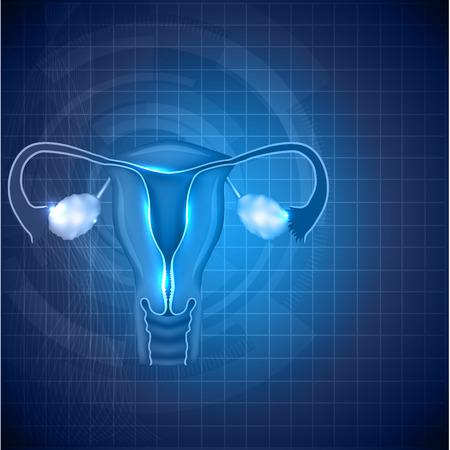 女性の生殖システムの背景。通常女性の子宮と卵巣のイラスト。