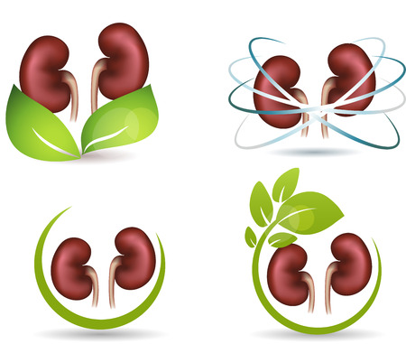 Nieren bescherming symbool collectie, geïsoleerd op wit Combinaties met groene bladeren en nieren